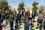 توزیع ۸۰۰ نهال درخت نارنج به دانش آموزان مدارس و مهد های کودک روستای مبارکه