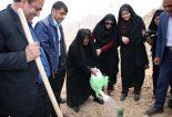 برگزاری مراسم درختکاری با حضور مسوولان استان و شهرستان بافق