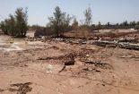 باران به مزارع کشاورزی روستای صادق آباد خسارت زد+تصاویر