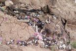 رها سازی داروهای تاریخ گذشته در مسیر قنات روستای باقرآباد