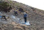 پایان زندگی درخت گردوی ۳۰۰ ساله بیدان پنج بافق بر اثر حریق