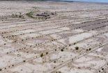 بیابان زدایی بیش از ۲ هزار هکتار از اراضی گودگوار بافق