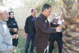 طرح شجره طیبه و پلاککوبی درختان در روستای مبارکه بافق اجرا شد
