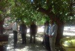 بازدید مدیرجهادکشاورزی بافق از دهستان سبزدشت روستاهای گودگینستان