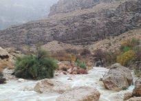 طبیعت زیبای روستای شادکام در یک روز بارانی
